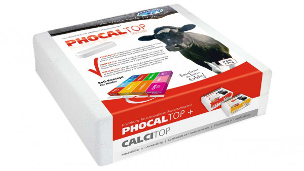 Phocaltop-Phosphor Bolus