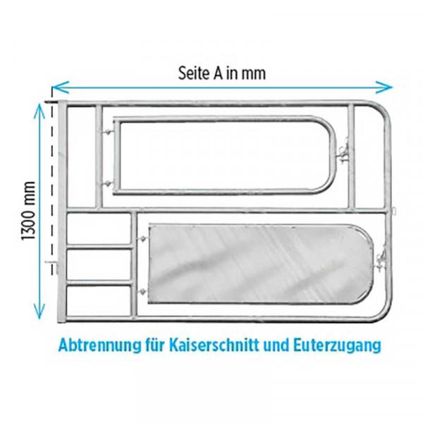Abtrennung f.Kaiserschnitt + Euterzugang
